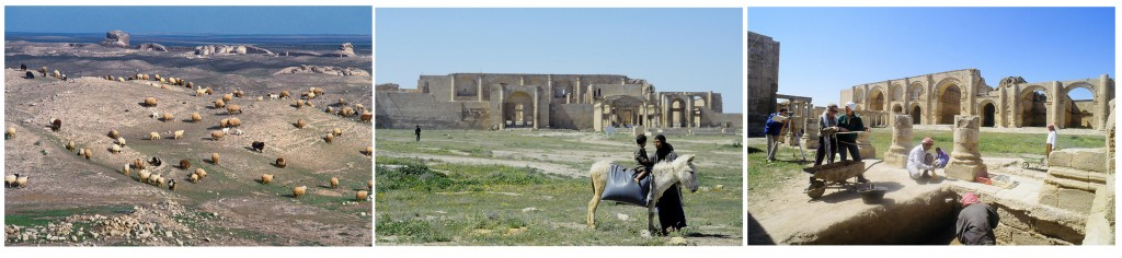(Left) Flocks grazing inside the ruins with ancient city walls in the background. Photo courtesy of Erick Bonnier. (Middle) Woman with child on donkey with main buildings in the great temenos in the background. Photo courtesy of Erick Bonnier. (Right) Italian archaeologists and Iraqi workers at work in the great temenos. In the background the iwans of Hatra�s main temple. Photo courtesy of Erick Bonnier.